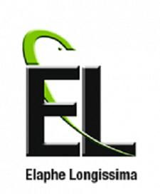 Elaphe Longisima